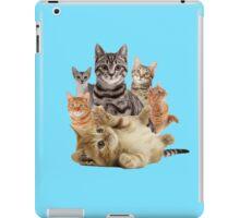 Cat Pile iPad Case/Skin