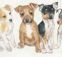 Rat Terrier Puppies by BarbBarcikKeith