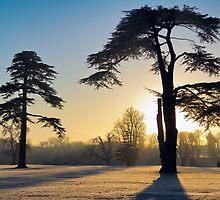 January Sunrise by Pete Latham