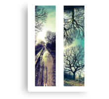 'Discovery' Panorama Set   Canvas Print