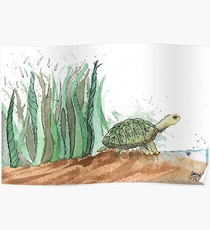 New Friend- Watercolor Turtle Illustration Poster