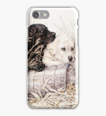 Two Labs and a Teddy iPhone Case/Skin