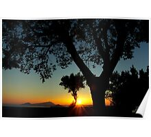 Sunset behind the trees ~ 2 Poster