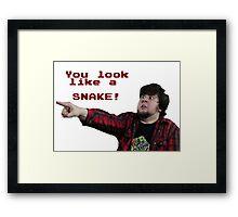 JonTron: YOU LOOK LIKE A SNAKE!  Framed Print