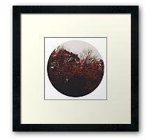 Deciduous Framed Print