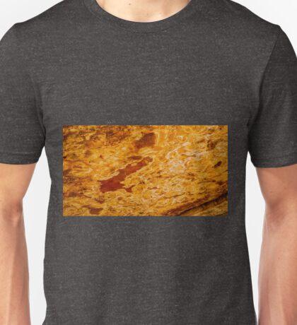 Sacred Cave Wall of Ulan Unisex T-Shirt