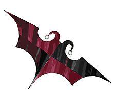 Batquinn logo Photographic Print