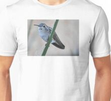 VIOLET HEADED HUMMER Unisex T-Shirt