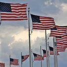 Patriotic Portrait by John Butler