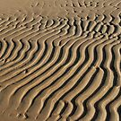 striped patterns in the sand by mrivserg