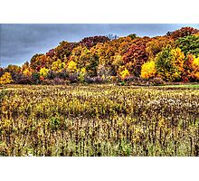 Fall Colors I Photographic Print