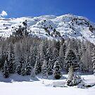 Winter in Bernina pass by annalisa bianchetti