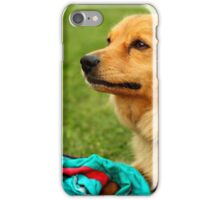 Playful Dog - Nature Photography iPhone Case/Skin