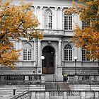 Stately Autumn by kridel