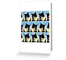 Cute Tuxedo Cat Pattern  Greeting Card