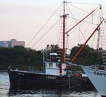 Galiee, rhode island fishing boats by Maureen Zaharie