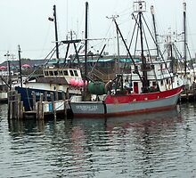 Galiee, rhode island fishing boats at the docks by Maureen Zaharie