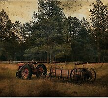 Life On The Farm (A Collaboration) by Lori Peters