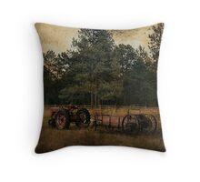 Life On The Farm (A Collaboration) Throw Pillow