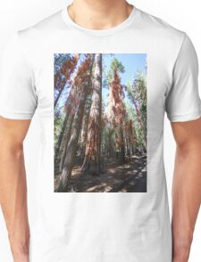Falls trail at Yosemite national Park,  Unisex T-Shirt