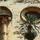 The Eye Of The Ox...................................Majorca by Fara