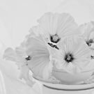Lavatera Flowers In Tea Cup - Still Life by Sandra Foster