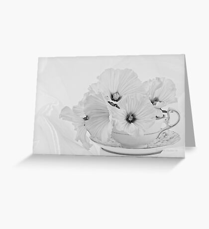 Lavatera Flowers In Tea Cup - Still Life Greeting Card