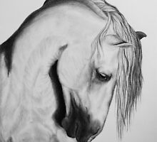 """To Never be Afraid"" by SD 2010 Photography & Equine Art Creations"