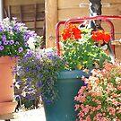 Grandma's front porch by Rainydayphotos