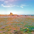 Holy Island, Low Tide by Priscilla Turner