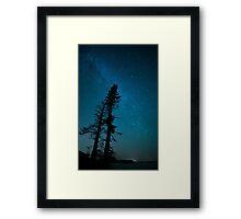 Trees of Acadia Framed Print