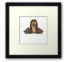 the colors of aela  Framed Print