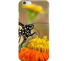Monarch Of The Flowers iPhone Case/Skin