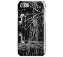 White Faced Heron hunting iPhone Case/Skin