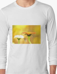 Fall Comes To The Garden Long Sleeve T-Shirt