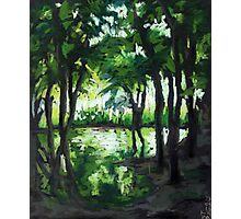 Spring landscape with green trees and lake Photographic Print