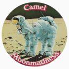 Camel by greyhoundredux