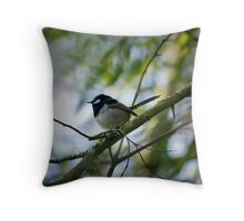 Male Fairy wren Cecil Hoskins Reserve, Bowral, NSW Throw Pillow