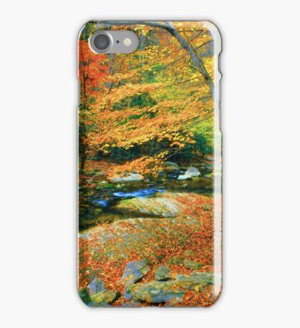 AUTUMN,LITTLE RIVER iPhone Case/Skin