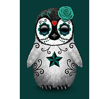 Teal Blue Day of the Dead Sugar Skull Penguin  Photographic Print