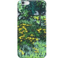 May flower field with dandelions iPhone Case/Skin