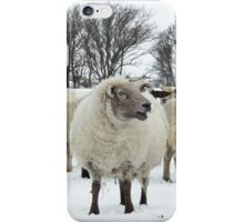 Flock of sheep in the snow iPhone Case/Skin