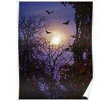 Moonlight Bats Poster
