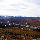 Alaska Range  by Greg Clifford