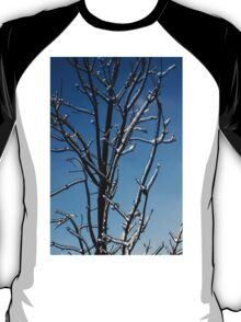 Mother Nature's Christmas Decorations - Icy Twig Jewels T-Shirt