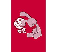 Bunny, bunny, fall in love Photographic Print