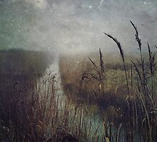 Out on the Marshes by Sarah Jarrett