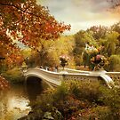 Autumn comes to Bow Bridge by Jessica Jenney
