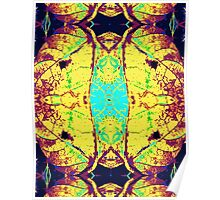 Psychedelic Pop Art Lungs Poster