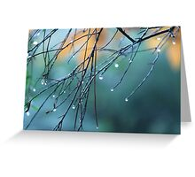Capturing the drips of nature Greeting Card